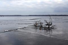 Lac de Grand-Lieu - zone centrale
