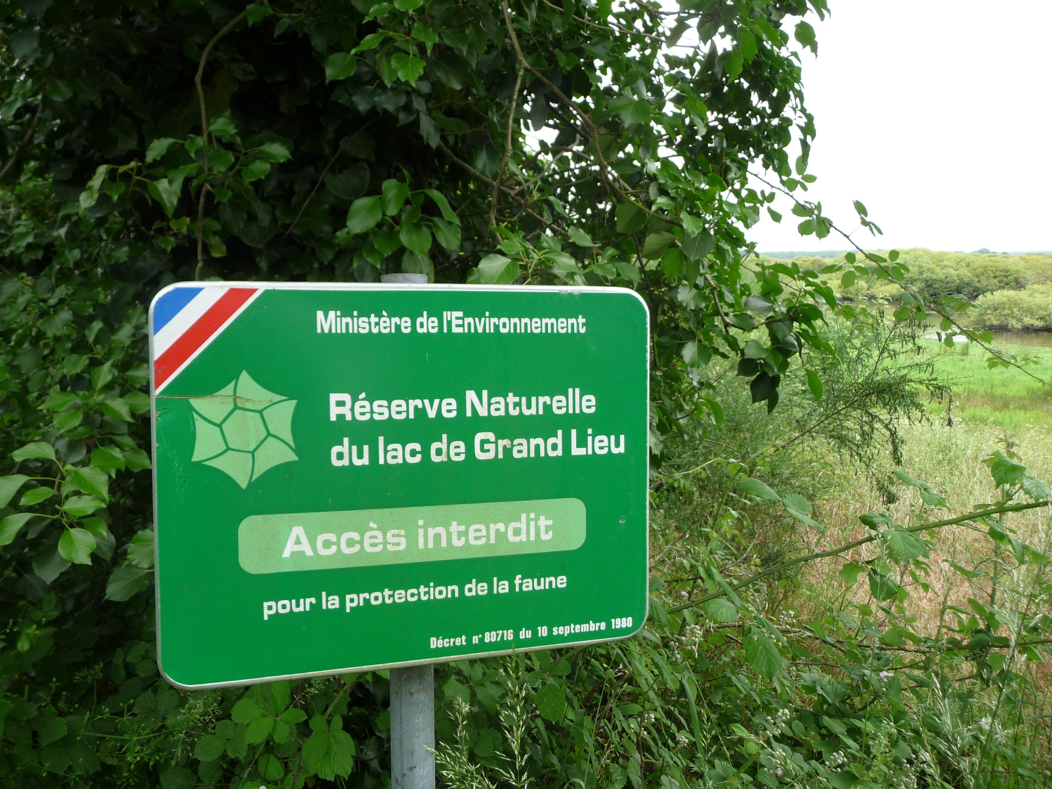 Lac De Grand Lieu Snpn Societe Nationale De Protection