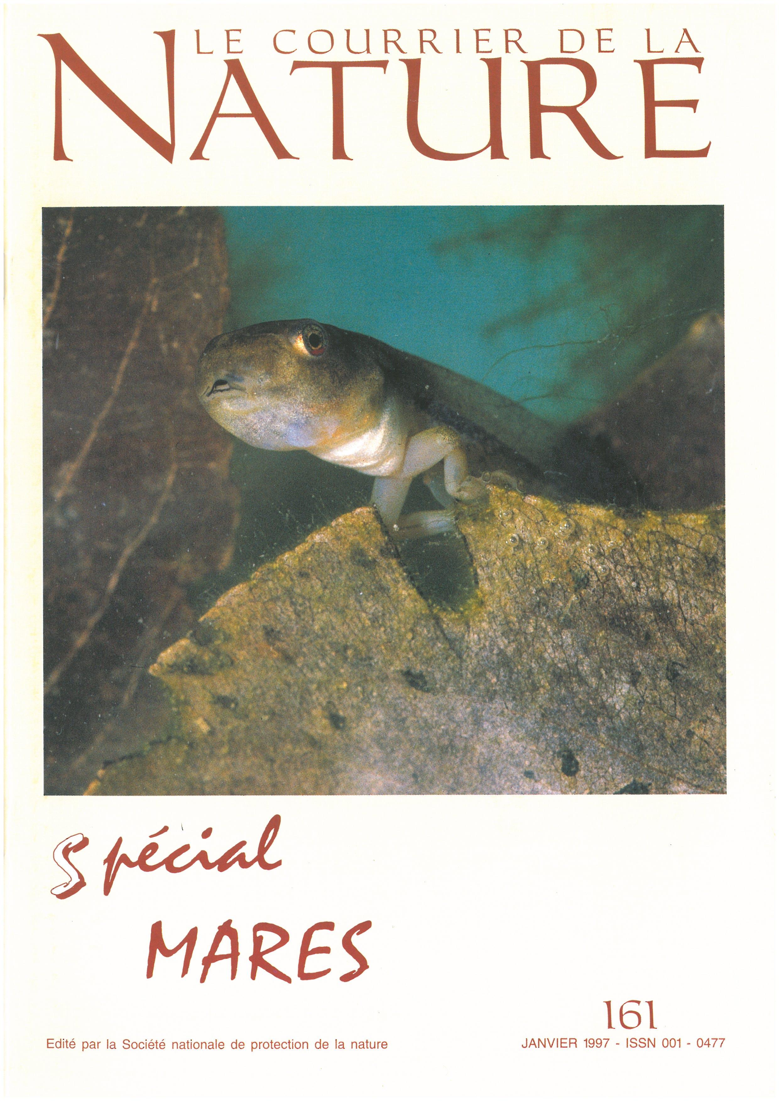 animaux aquatiques des mares