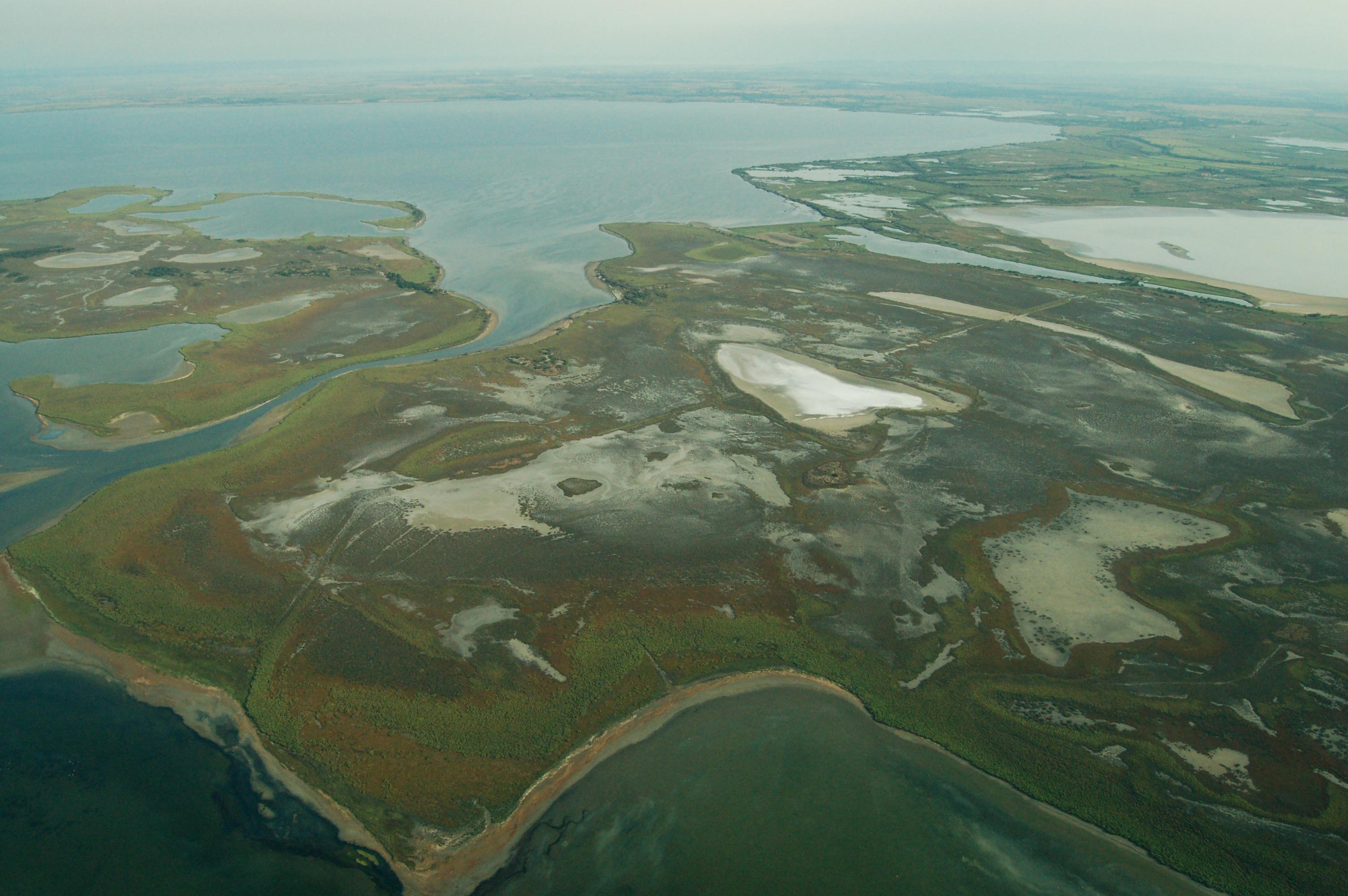Vue aérienne d'une partie de la Réserve naturelle nationale de Camargue
